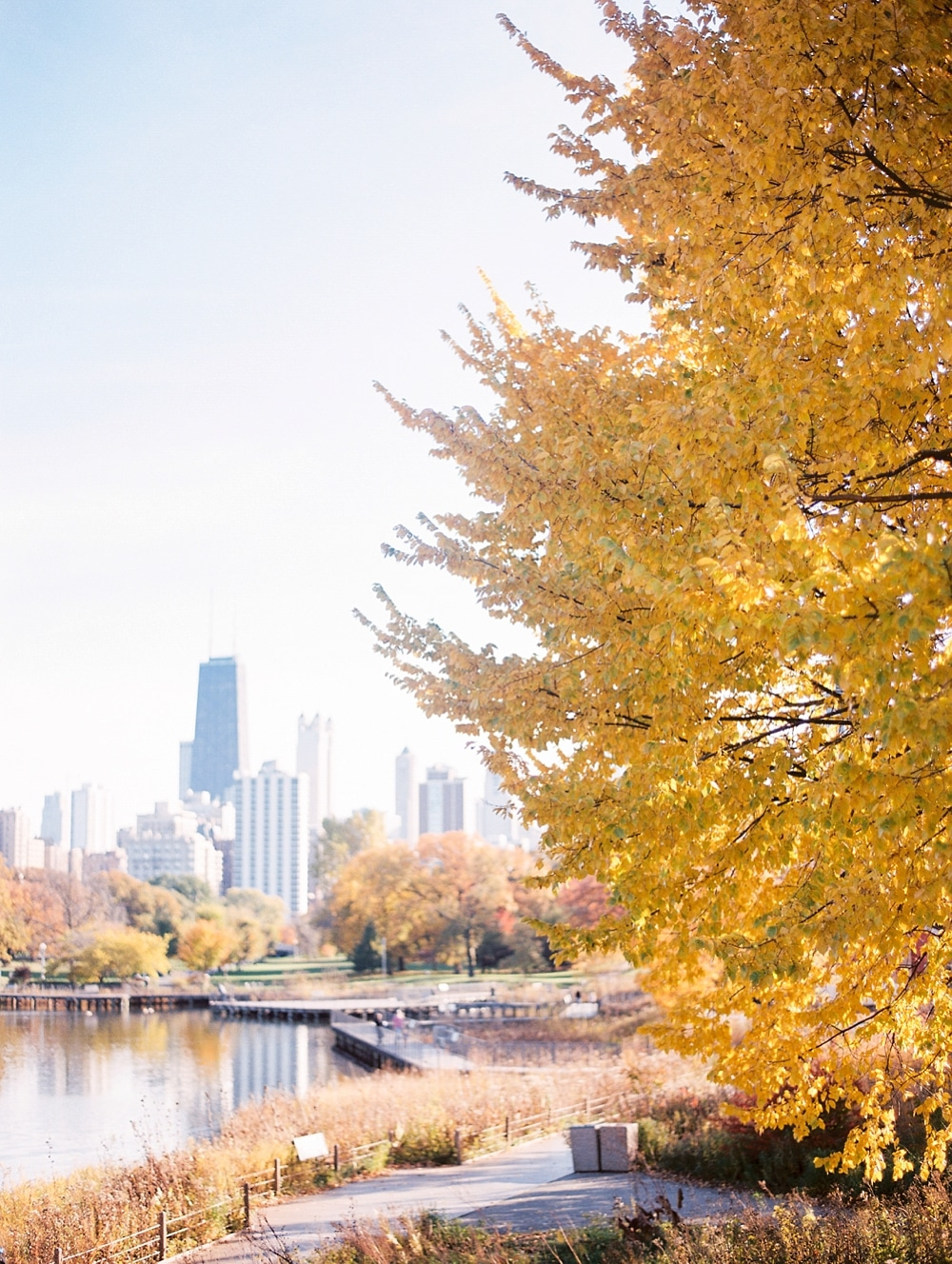Kristin-La-Voie-Photography-Chicago-Wedding-Photographer-South-Pond-Dog-Engagement-Lincoln-Park-38