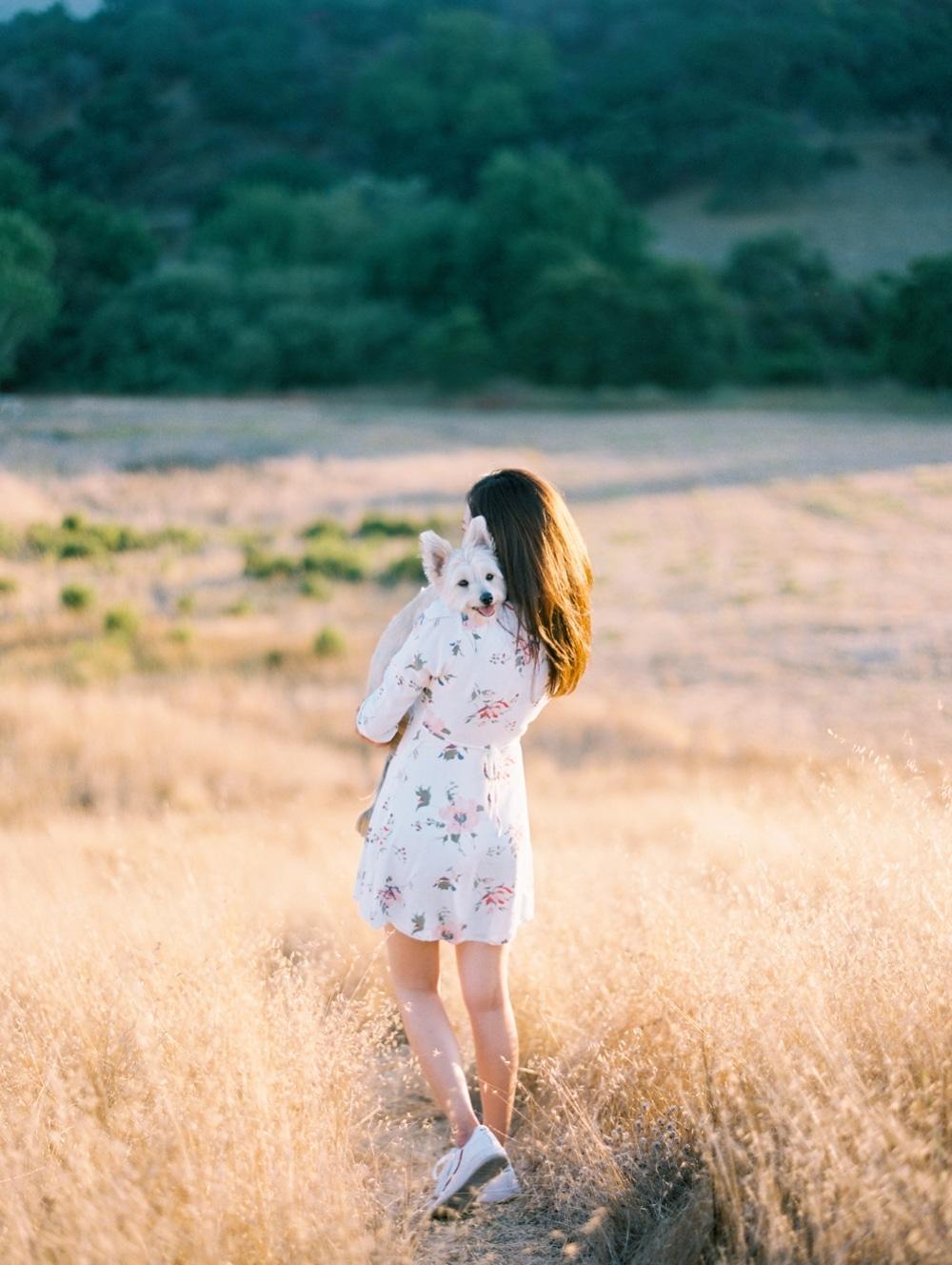 Kristin-La-Voie-Photography-california-wedding-photographer-dog-session-rancho-san-antonio-los-altos-13