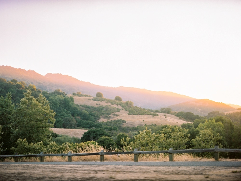 Kristin-La-Voie-Photography-california-wedding-photographer-dog-session-rancho-san-antonio-los-altos-25