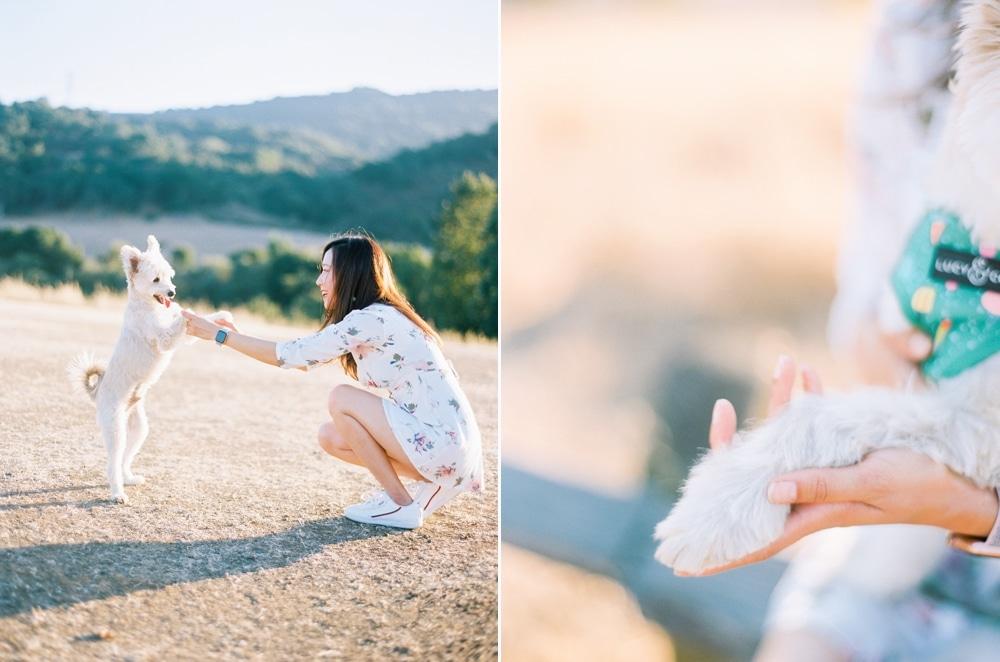 Kristin-La-Voie-Photography-california-wedding-photographer-dog-session-rancho-san-antonio-los-altos-36