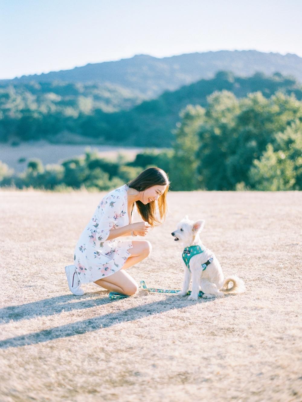 Kristin-La-Voie-Photography-california-wedding-photographer-dog-session-rancho-san-antonio-los-altos-43