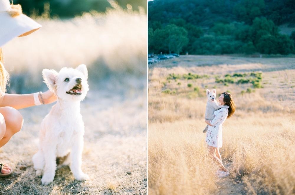 Kristin-La-Voie-Photography-california-wedding-photographer-dog-session-rancho-san-antonio-los-altos-50