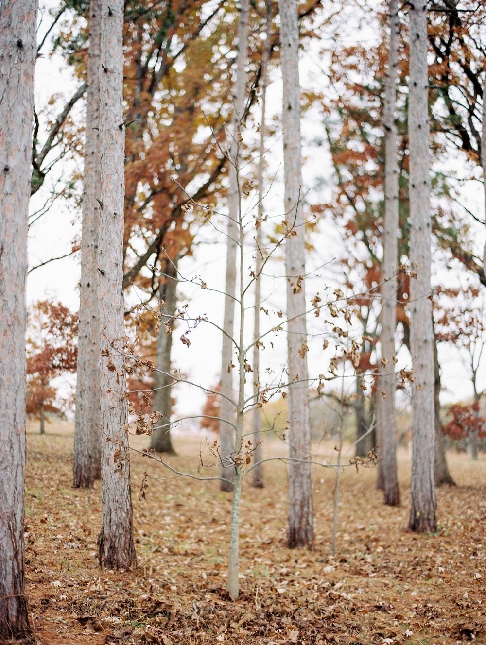 Kristin-La-Voie-Photography-morton-arboretum-chicago-wedding-photographer-1-2