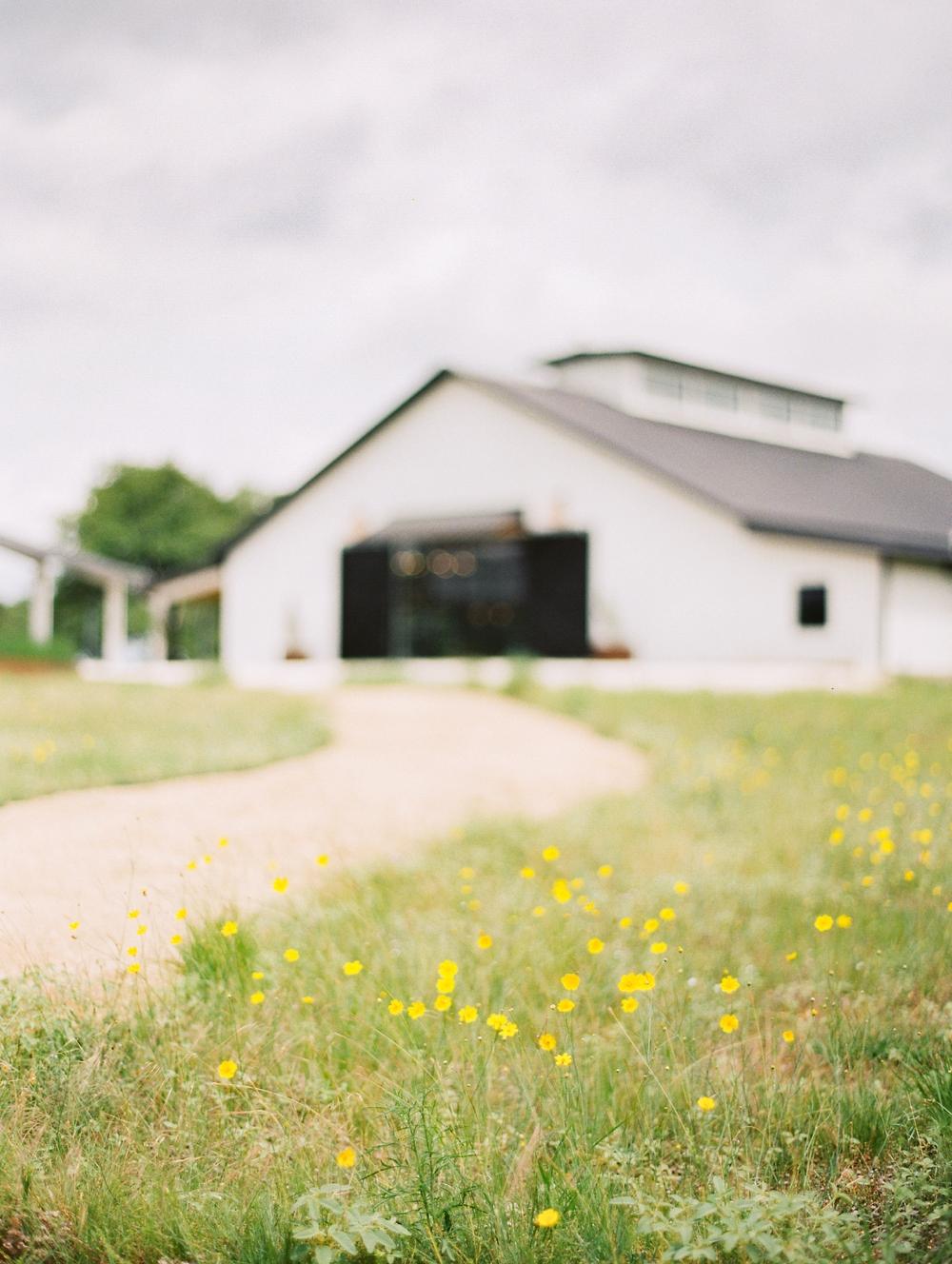 Kristin-La-Voie-Photography-Austin-Wedding-Photographer-Mae's-Ridge-186