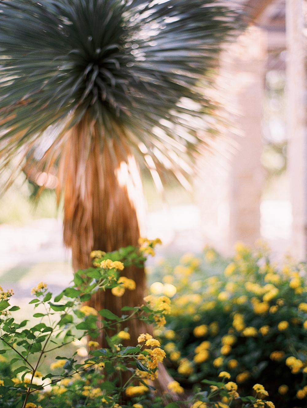 kristin-la-voie-photography-AUSTIN-WEDDING-PHOTOGRAPHER-BEST-IN-TEXAS-113