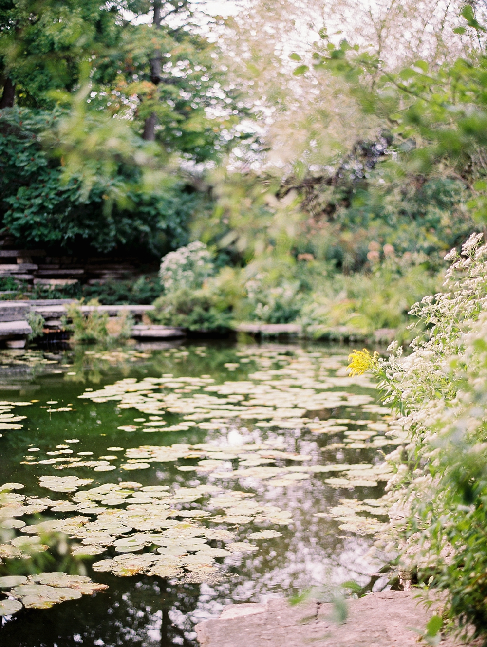 kristin-la-voie-photography-Chicago-wedding-lily-pool-elopement-freehand-hotel-172